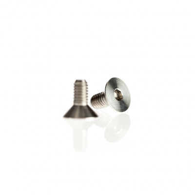 Crucial Detail Porthole Hex Screws, set of 2